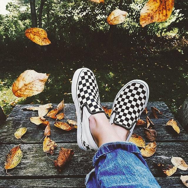 Fall News 🍂